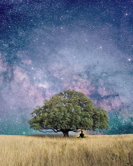 Mediterend persoon onder boom en sterrenhemel
